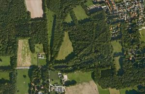 Sterrenbos van bovenaf