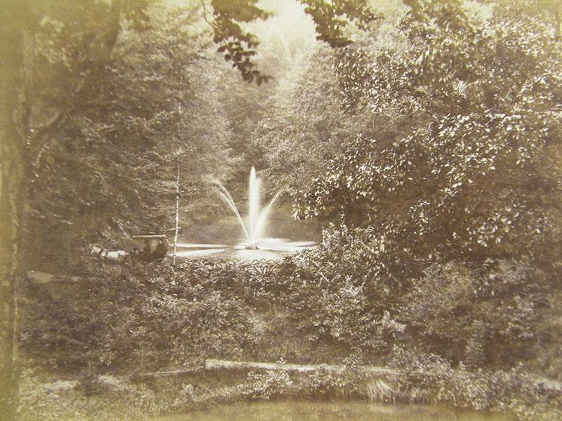 Paard-en-wagen-en-fontein