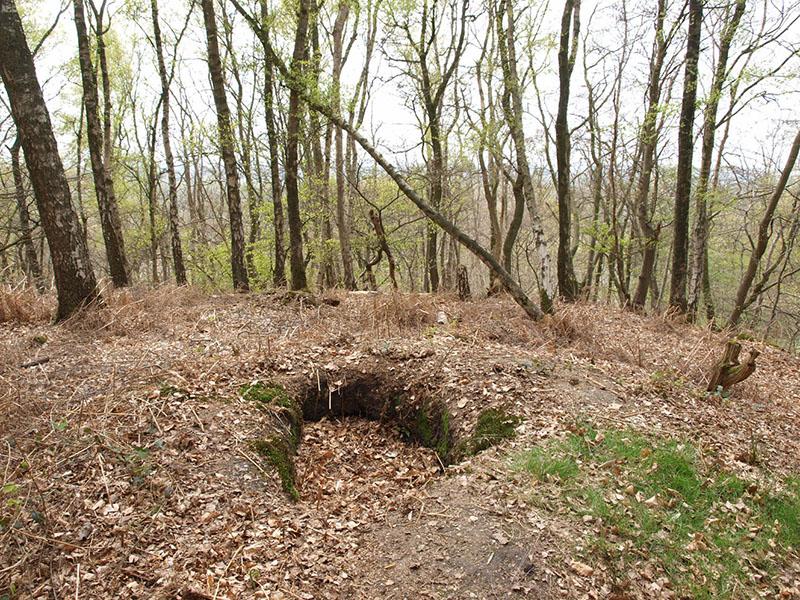 Schuttersput-in-grafheuvel