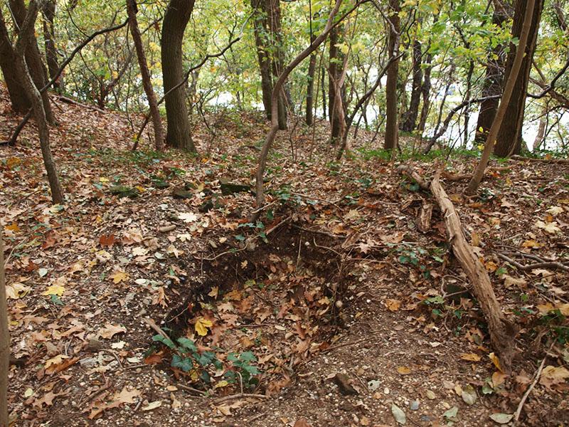Schuttersput-the-Hill.pg_