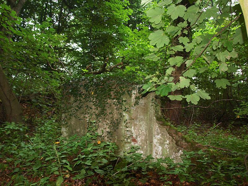 Vossenhut-restant-muur