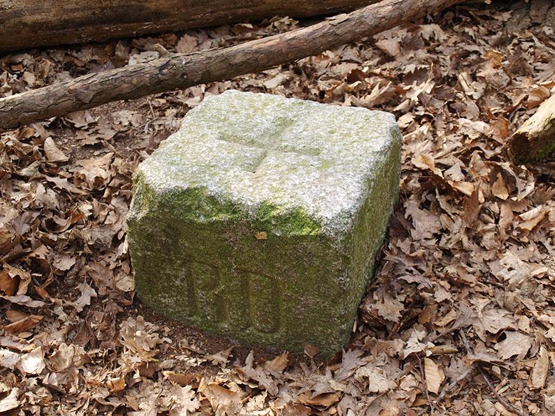 RD-steen